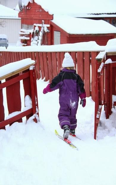 Januar20_ski_ 080 (Medium)