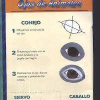 Cómo Pintar Ojos (14).jpg