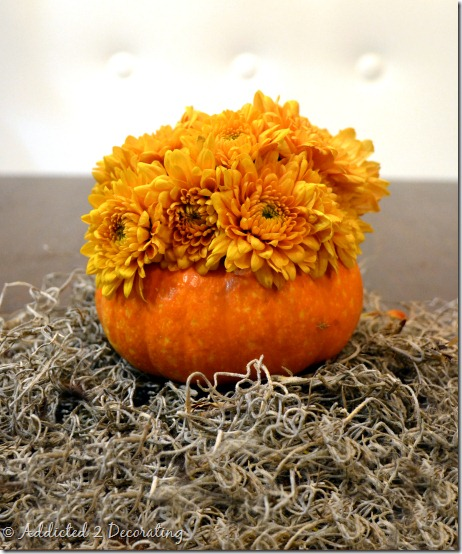 miniature pumpkin vase--natural color