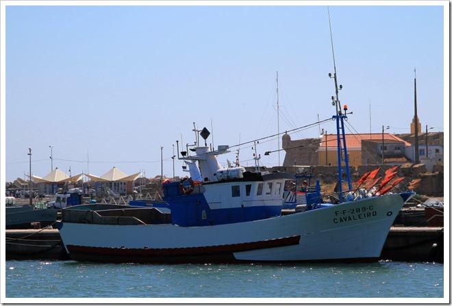 Cavaleiro FF-289-C (2)