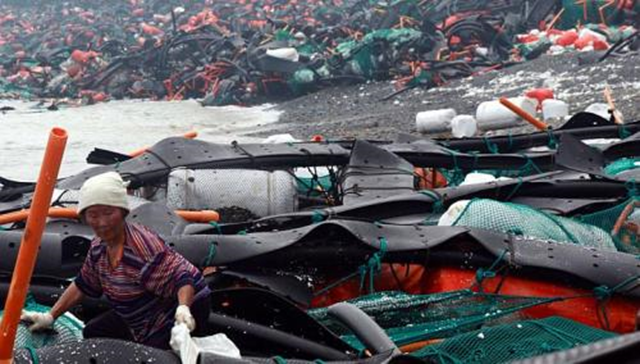 A woman collects abalone at a beach covered with garbage and equipment used for abalone farming in the aftermath of Typhoon Bolaven in Wando, about 360 km south of Seoul, on 29 August 2012. AFP
