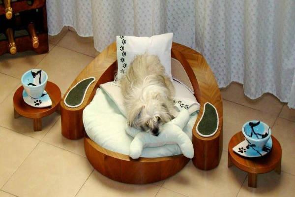 Cama-Mesinhas-Pets-Cachorro-Gato