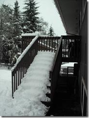 snowpocalypse  14