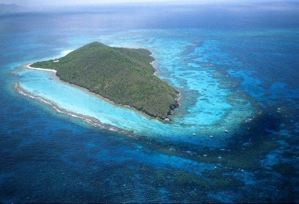 Buck Island Reef - buck.bmp.jpg