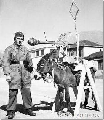 Fotos engraçadas da Segunda Guerra Mundial (18)