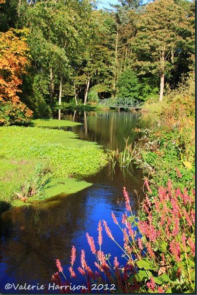 27-ardwell-house-gardens