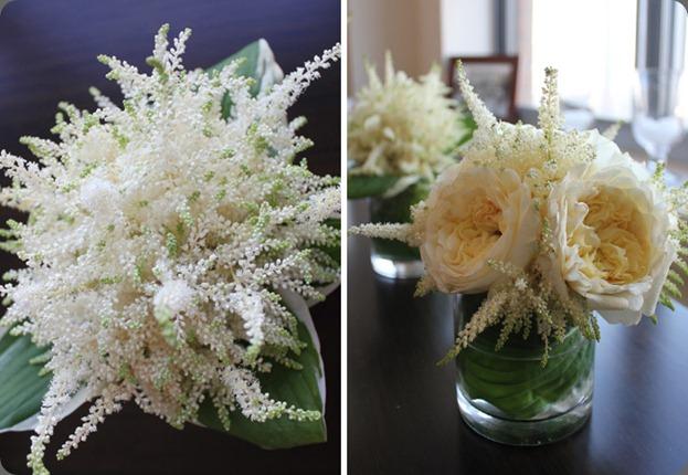 astilbegardenroses blushdesignsny dot com