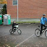 CycleofLife-022.jpg