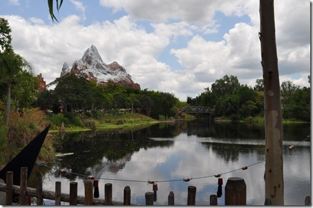 06-03-11 Animal Kingdom 150