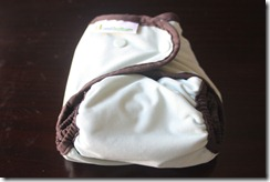 Best Bottom One Size All In Two Cloth Diaper - Smallest Setting