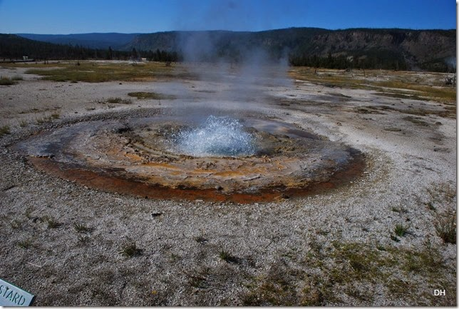 08-11-14 A Yellowstone National Park (200)