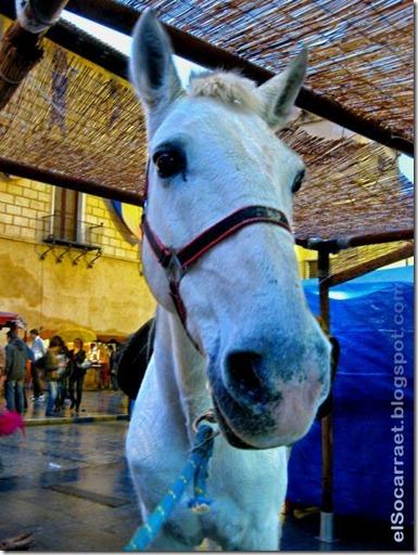 Fira2011 elSocarraet   © rfaPV (2)