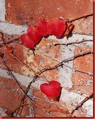julias art and skull progress plus autumn leaves 009