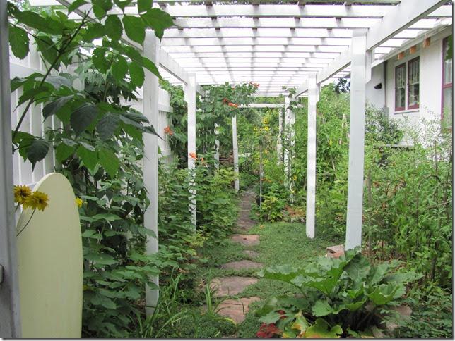 Dakota garden tomatoes in june july august for Hops garden designs