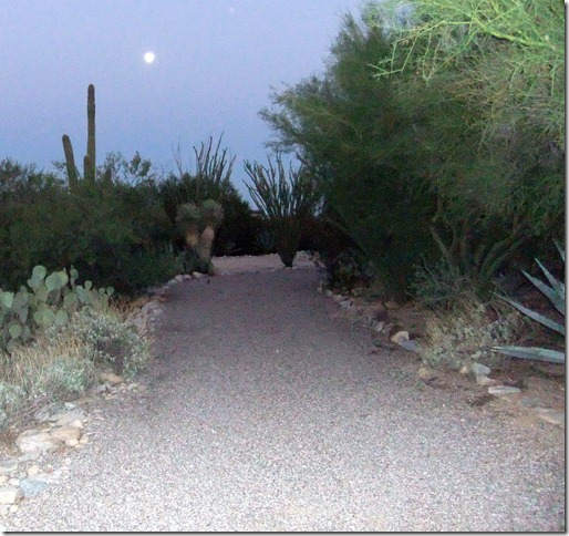 Driveway AM blue moon 9-1-2012 6-00-49 AM 2467x2324