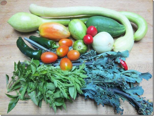 Tromboncino&veggies