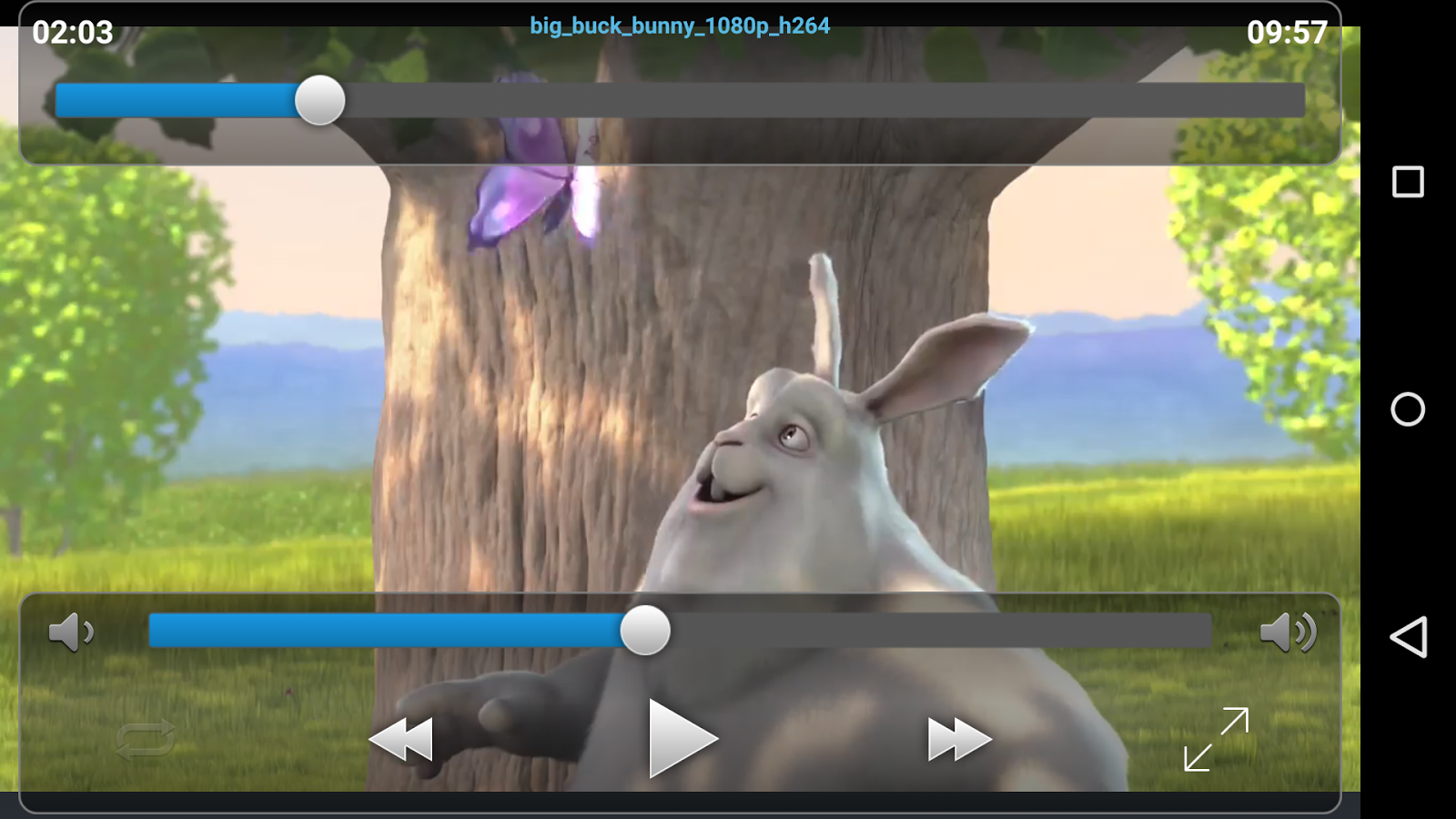 VLC Streamer Screenshot 1