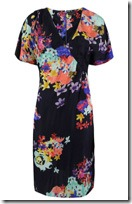 Great Plains Floral Print Dress