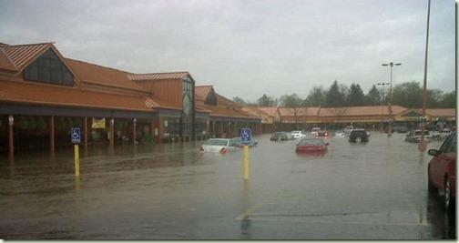 DLM Flood