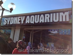 Sydney Aquarium _0059