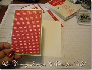 Z Fold Card 030