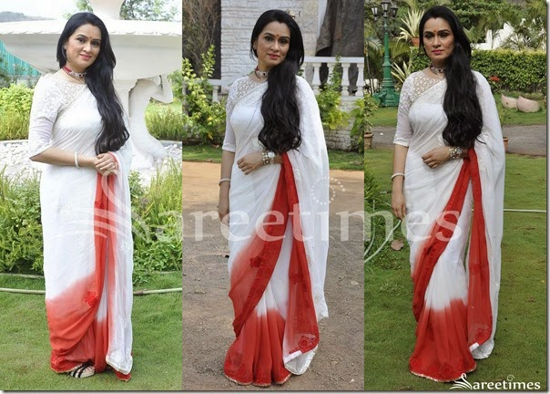 White_Brown_Dual_Color_Saree