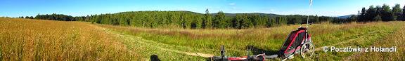 Łąki nad Wierchomlą w kierunku Runka