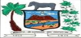 camara municipal 1