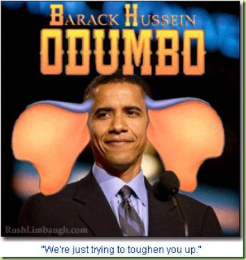 Dumbo flaps