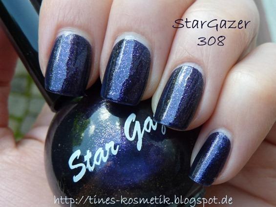 StarGazer 308 2