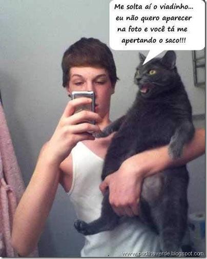 face outros gato