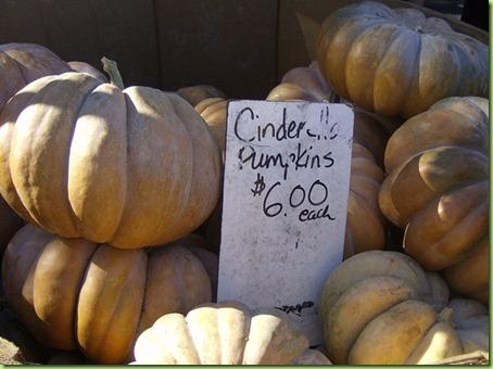 cinderella-pumpkin