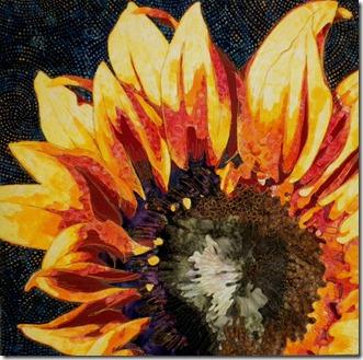 Themel_SunflowerCrop
