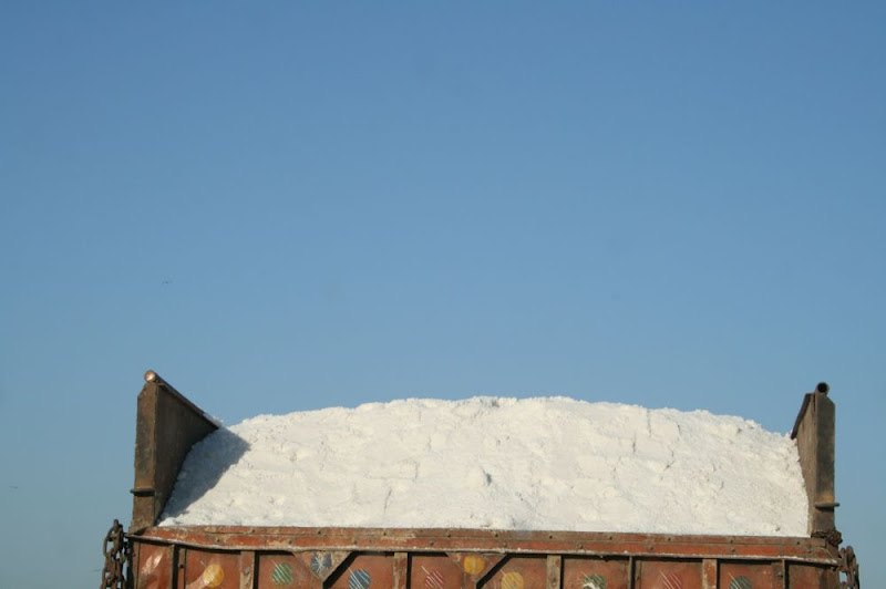 IMG_1450-Salt back.JPG