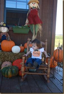 Pumpkins 082