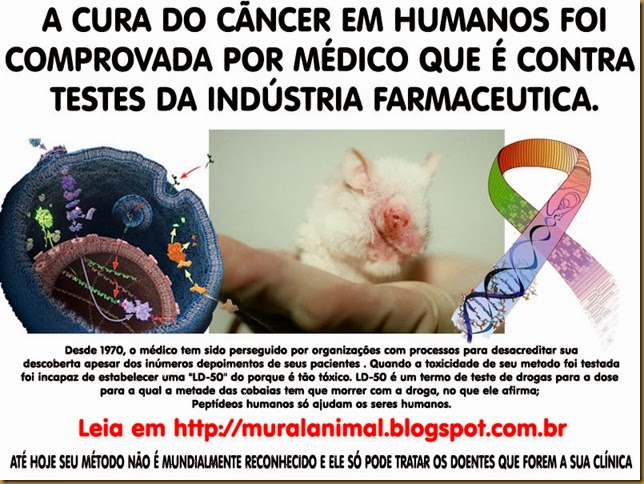 animais_cura_cancer