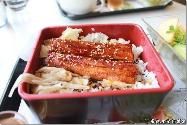 台南成大奇美咖啡。「鰻魚飯」套餐,鰻魚也不是現烤的,所以肉質稍微有點韌勁,不像一般剛烤好得鰻魚搬得鬆鬆軟軟。