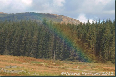 17-Rainbow