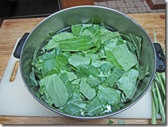 steaming collards