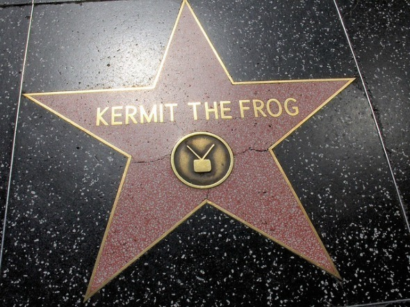 hollywood star kermit