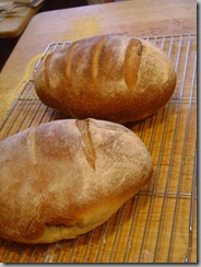 breads 004