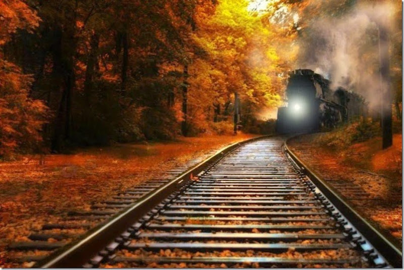 nature_trains_railroad_tracks_railway_1024x682_18865