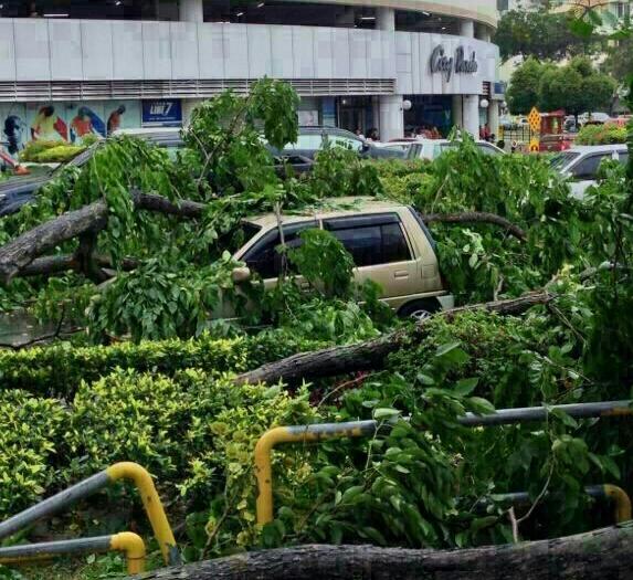 Angin kencang di Kota Kinabalu