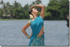 bhavana-hot in saree pic