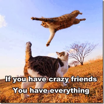 crazy friends2