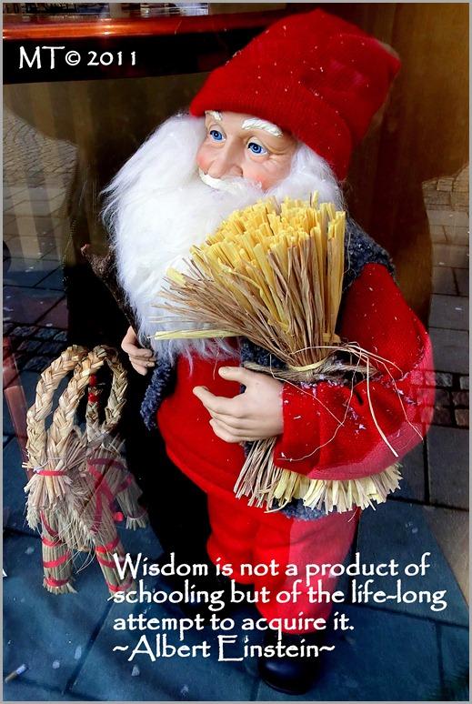 6_CIMG5946-1 wisdom