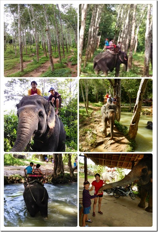 elephantkrabi_collage