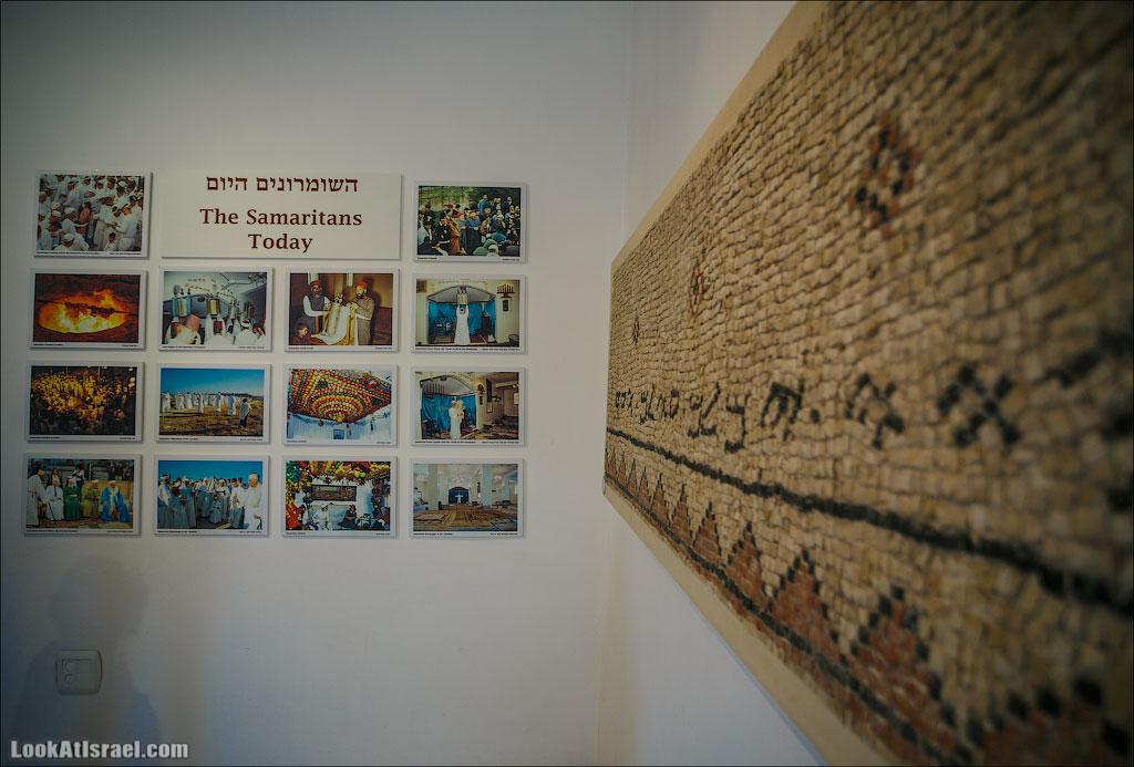 Мозаики от «Доброго самаритянина» (israel  путешествия иудея и самария и интересно и полезно выставки музеи фестивали  20130215 good samaritan mosaic 020 5D3 8384)