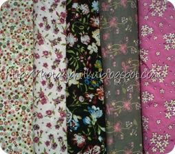 IMG-20111225-00898