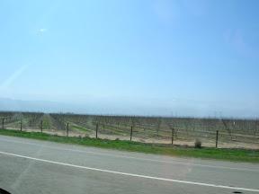 001 - Camino de Los Angeles.JPG
